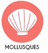 Mollusques et produits à base de mollusques