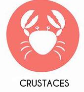 Crustacés et produits à base de crustacés
